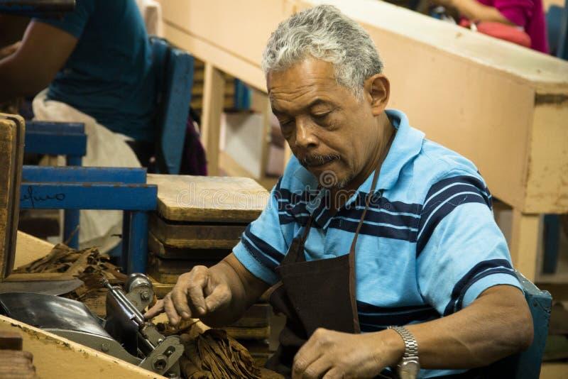 Man som arbetar i en cigarrfabrik fotografering för bildbyråer