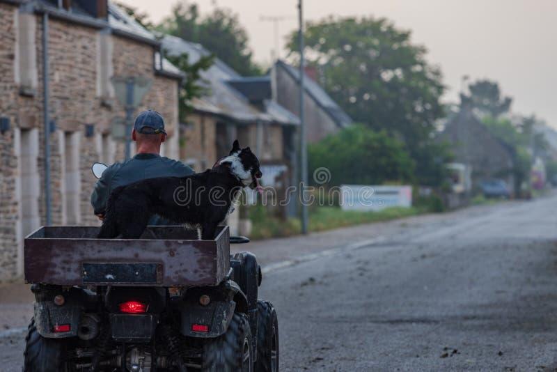 Man som bär hans hund på en kvadrat arkivbild