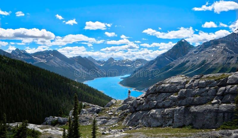 Man som fotvandrar i kanadensaren Rocky Mountains arkivbild