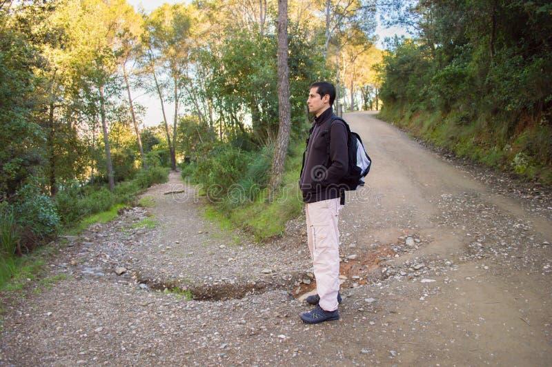 Man som fotvandrar i skog fotografering för bildbyråer
