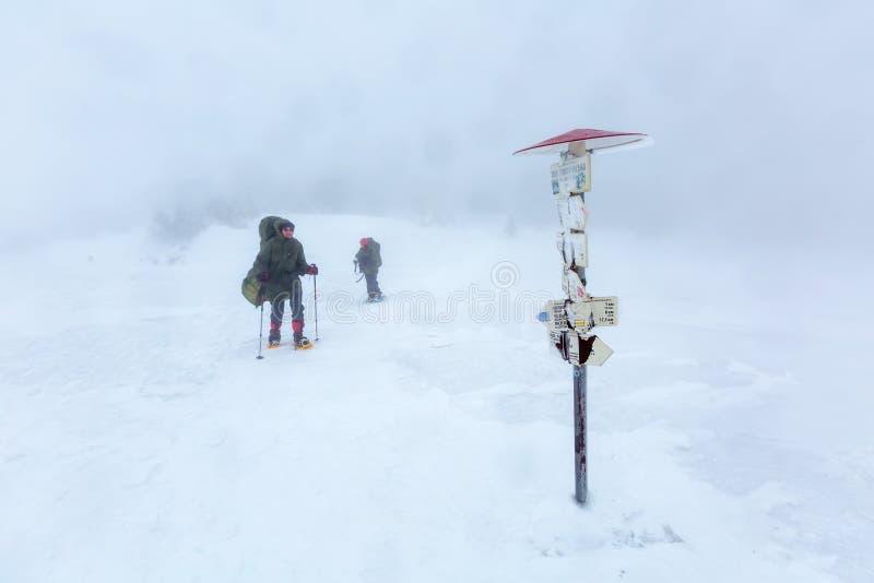 Man som fotvandrar i vinterberg för åskväder royaltyfria foton
