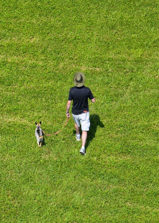 Man som går hunden i ett gräs- fält royaltyfri fotografi