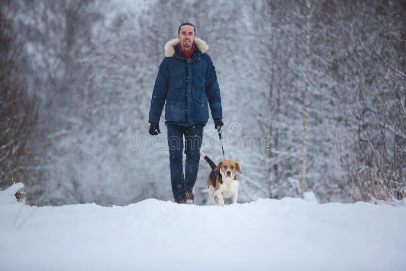 Man som går med hundbeaglet i vinter Snöa dag arkivbild