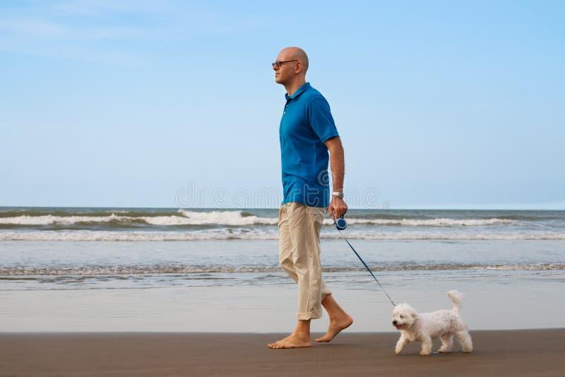 Man som går med hunden på stranden royaltyfri bild