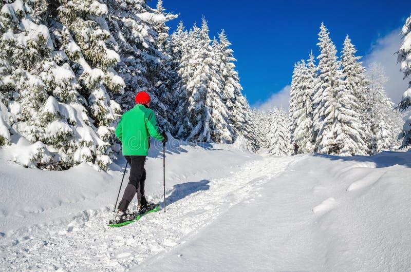 Man som går med snöskor på vintern som fotvandrar slingan arkivbild