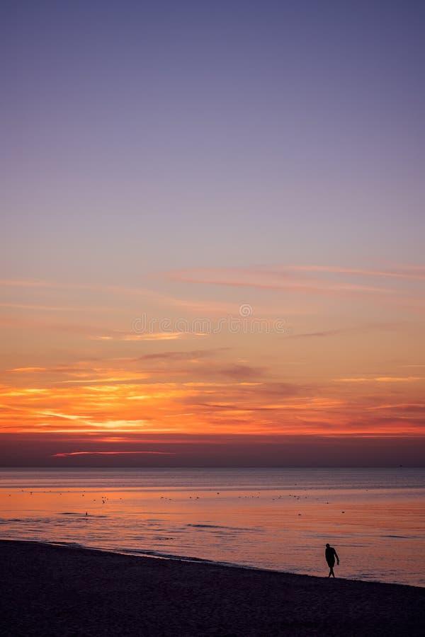 Man som går på stranden på solnedgången royaltyfria foton