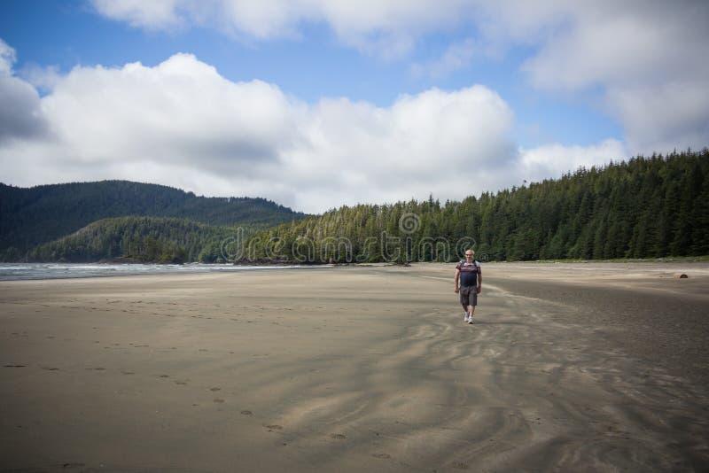 Man som går stranden på San Josef Bay nära härdad port, brittiska Colu fotografering för bildbyråer