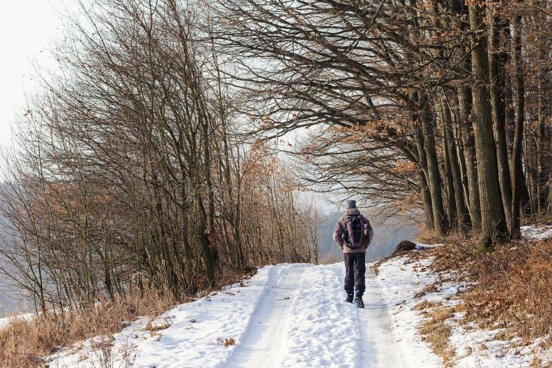 Man som går vinternaturbanan royaltyfria bilder