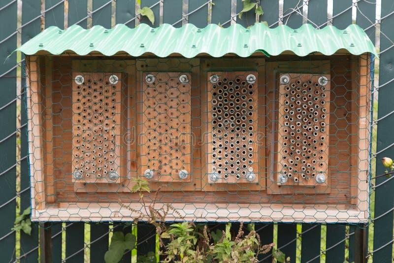 Man som göras det trädgårds- biet att gå in i kupan arkivfoto