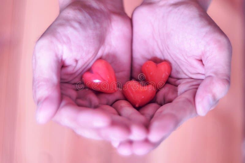 Man som ger den röda hjärtahållen i handen som visar förälskelsevalentinbröllop för ung bakgrund för vänpar royaltyfria bilder