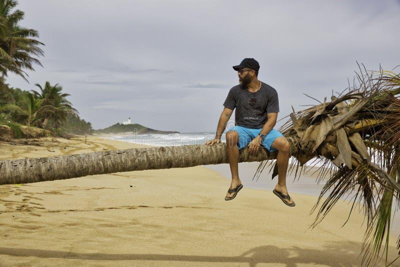 Man som har en fritid som kopplar av på en palmträd arkivbild