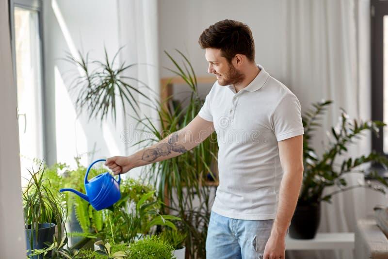 Man som hemma bevattnar houseplants arkivfoto
