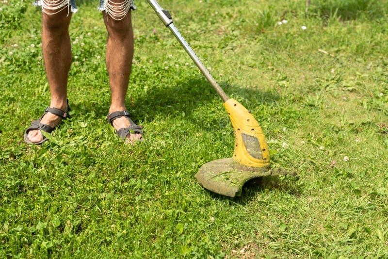 Man som klipper grassinen trädgården med en gräsklippare, beskärare, detalj kopiera avst?nd arkivbilder
