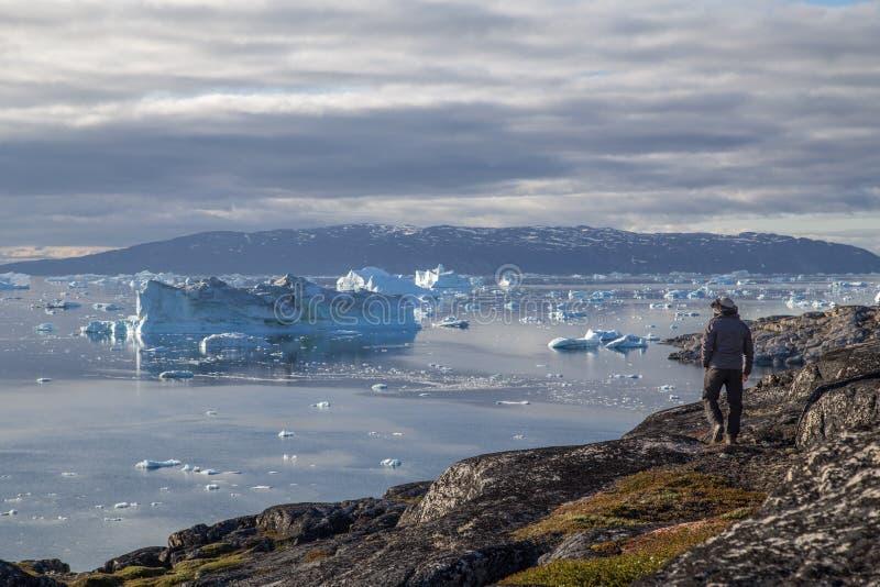 Man som ser isberg i Rodebay, Grönland royaltyfri fotografi