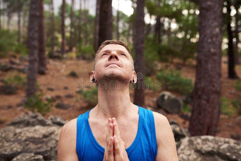Man som ser till himlen och ber i en skog royaltyfria foton