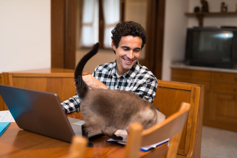 Man som smeker hans katt, medan arbeta hemma arkivfoton