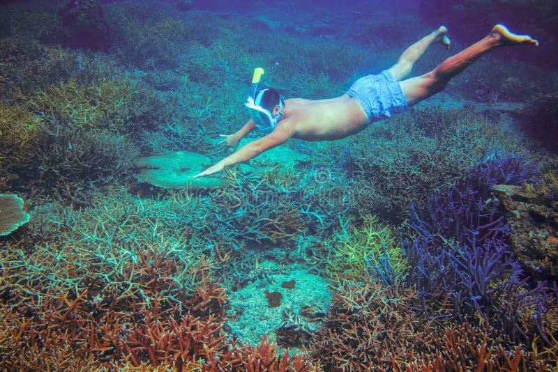Man som snorklar i korallrev Mannen dyker oavkortade den undersea framsidamaskeringen Snorkla i undervattens- foto för tropiskt h fotografering för bildbyråer