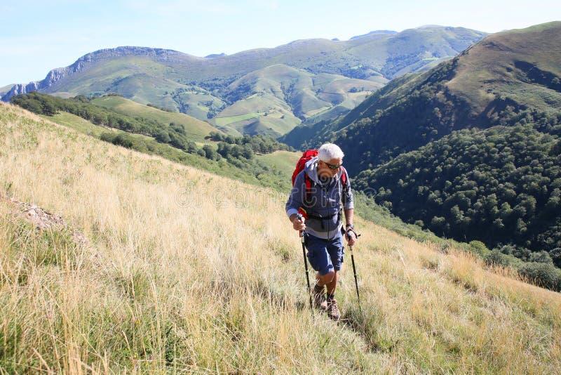 Man som trekking basque landsberg royaltyfria bilder