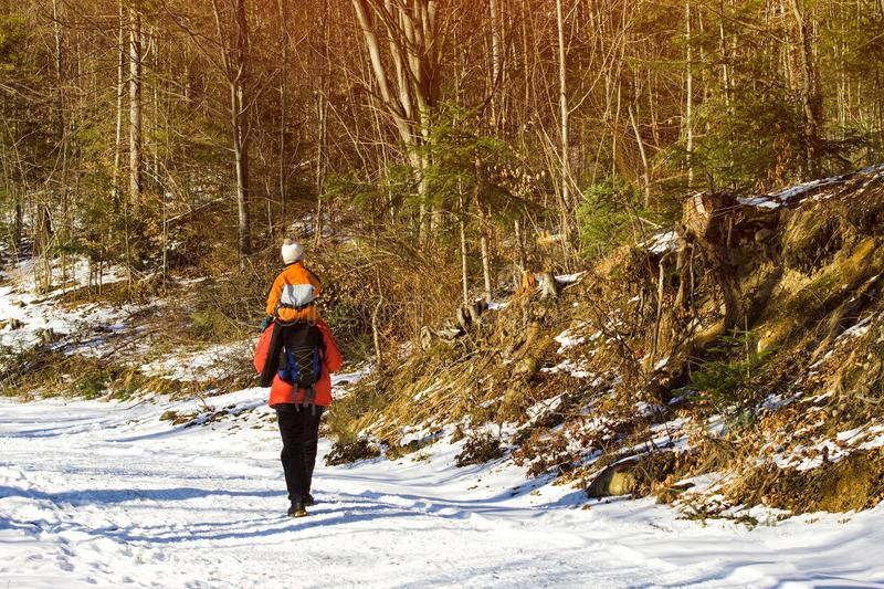 Man with son on shoulders walking along the road in a snowy forest. Winter. Day stock image