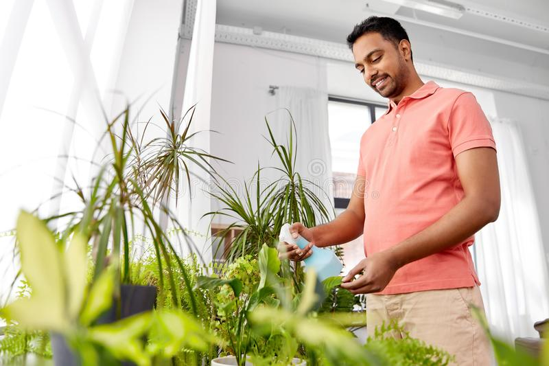 Man spraying houseplant with water at home. People, nature and plants care concept - smiling indian man spraying houseplant by water sprayer at home stock photography