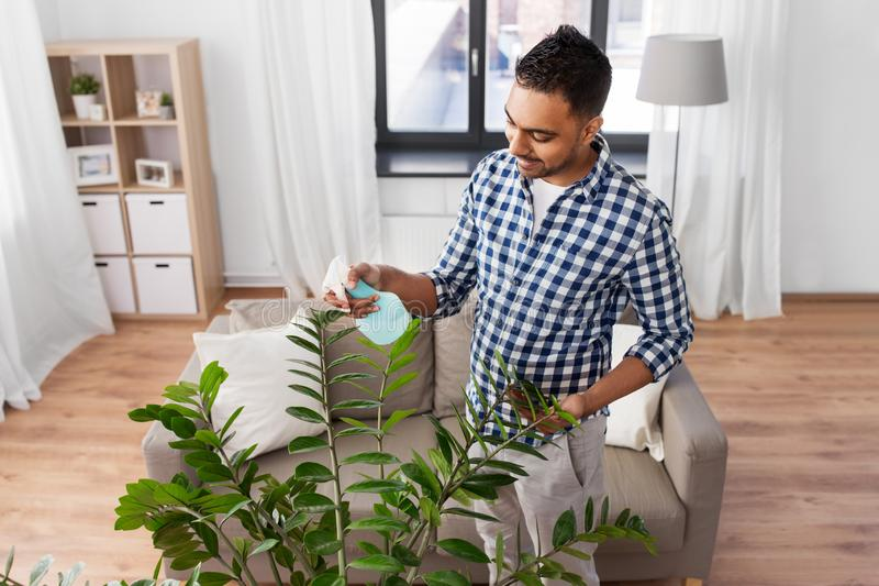 Man spraying houseplant with water at home. People, nature and plants care concept - smiling indian man spraying houseplant by water sprayer at home royalty free stock photos