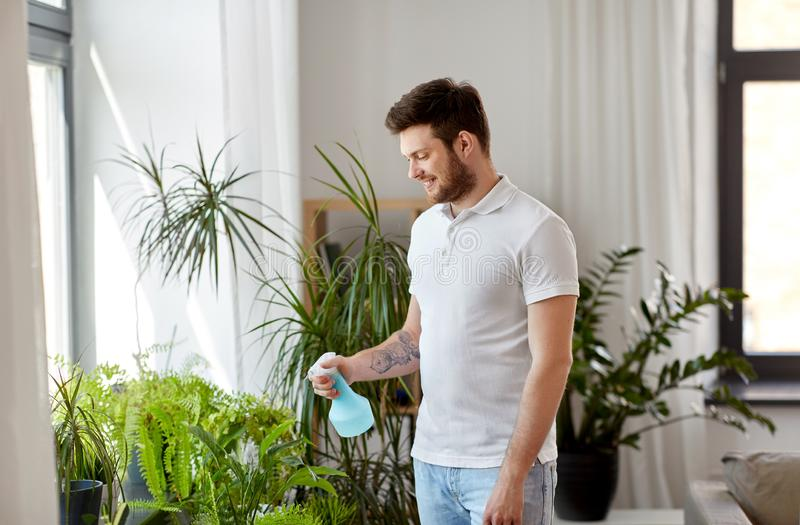 Man spraying houseplants with water at home. People, nature and plants care concept - man spraying houseplants by water sprayer at home royalty free stock photos