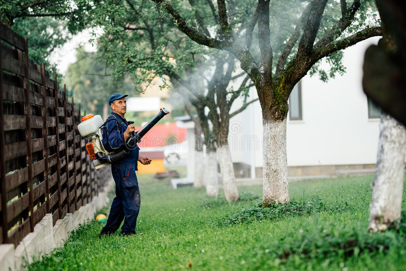 Man spraying toxic pesticides and herbicides in fruit orchard royalty free stock photos