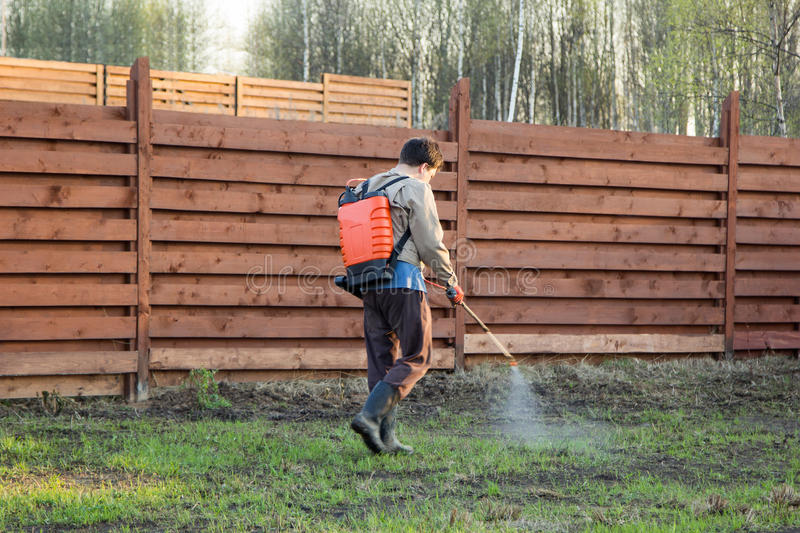 Man sprays grass with herbicide of a knapsack sprayer. Man sprays grass with herbicide of knapsack sprayer royalty free stock images