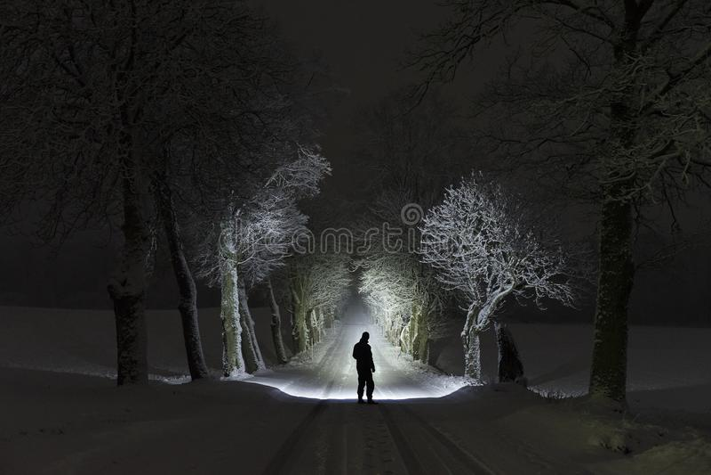 Man stående det fria på natten i trädgränden som skiner med ficklampan arkivfoton