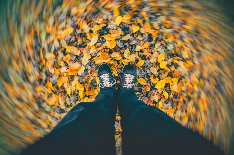 Man standing in the autumn park on dry fallen leaves. Strong wind blowing leaves around stock photos