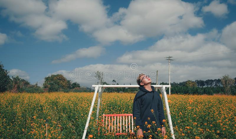 Man Standing on Bed of Yellow Flowers Near Bench Swing stock photos