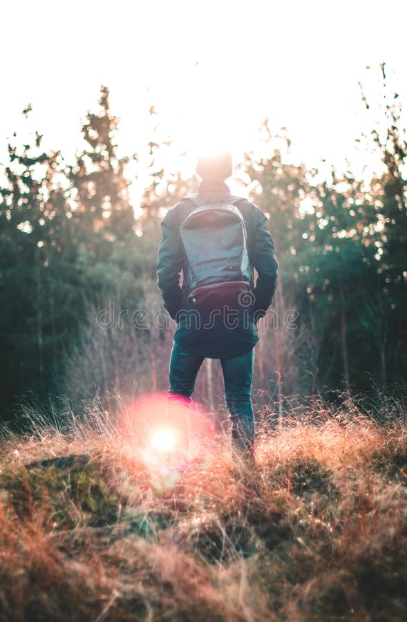 Man Standing Infront of Forest stock images