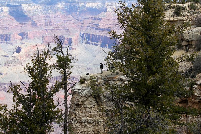 Man standing on the south rim of the Grand Canyon. stock image