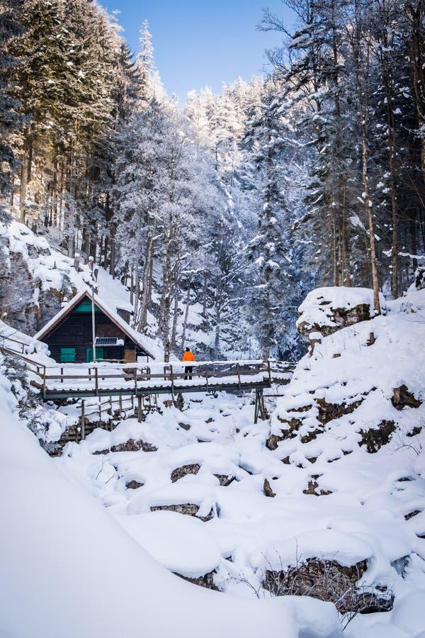 Man standing near hut on bridge in snowy gorge Baerenschuetzklamm. With frozen waterfalls in winter royalty free stock photography