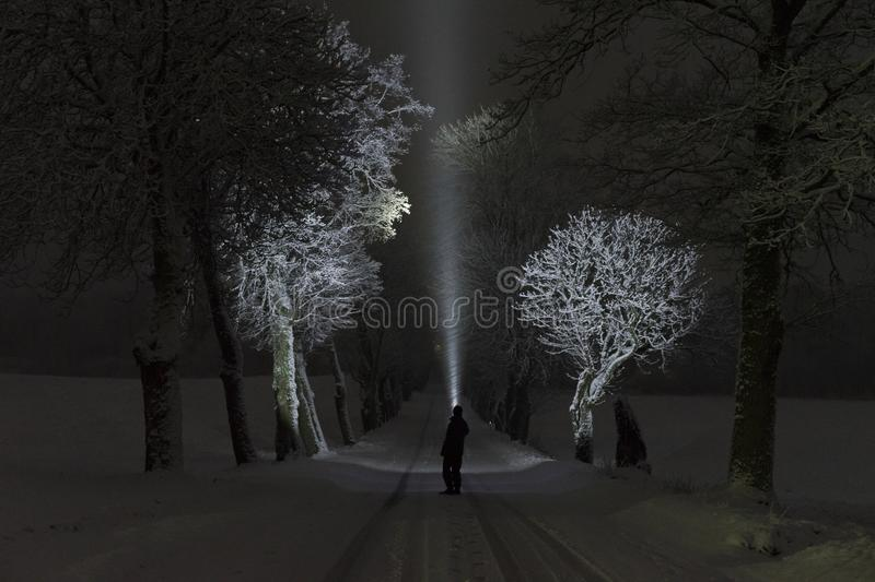 Man standing outdoors at night in tree alley shining with flashlight. Beautiful dark snowy winter night. Nice landscape and nature photo with frost and snow in royalty free stock photo