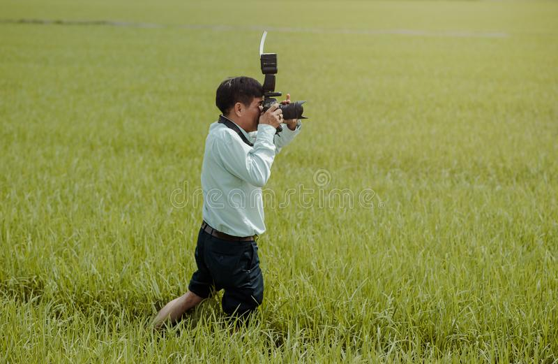 Man Standing on Rice Field Holding Camera royalty free stock images