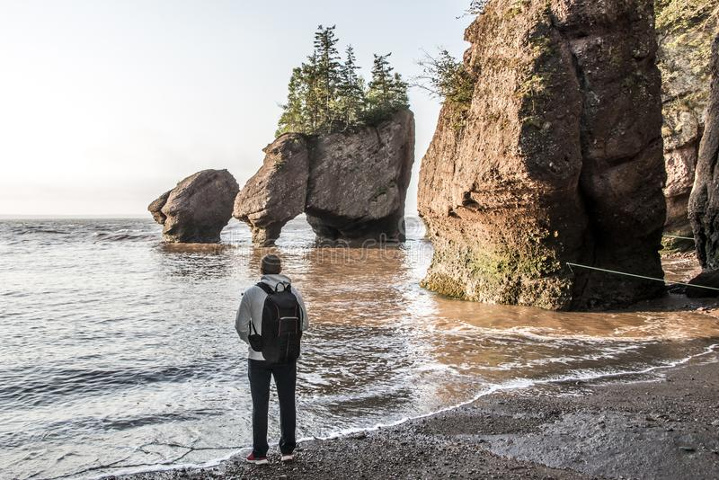 Man standing at Sunrise famous Hopewell Rocks formations at low tide biggest tidal wave Fundy Bay New Brunswick Canada. Sunrise at famous Hopewell Rocks stock photography