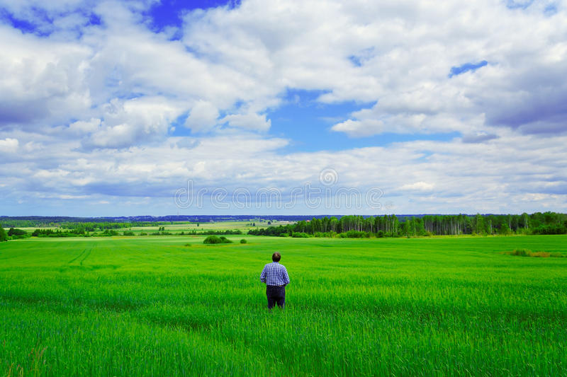 Man staying on the field. royalty free stock photography