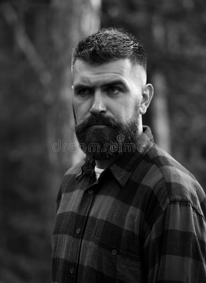 Man with strict face and beard in plaid, checkered shirt,. Man with strict face and beard in plaid or checkered shirt, lumberjack style. Man with stylish beard royalty free stock photography