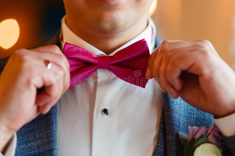 A man in a stylish suit corrects a pink butterfly. Closeup of a corporate man adjusting his fashionable pink tie. Business concept stock photography