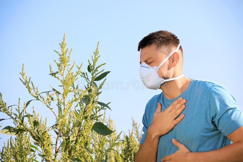 Man suffering from ragweed allergy outdoors stock photography