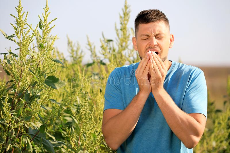 Man suffering from  allergy outdoors on sunny day royalty free stock image
