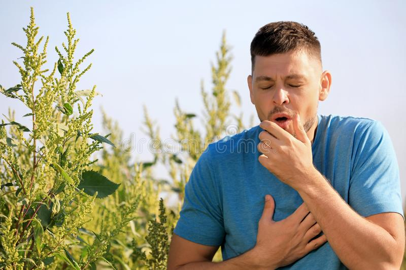 Man suffering from ragweed allergy outdoors royalty free stock image