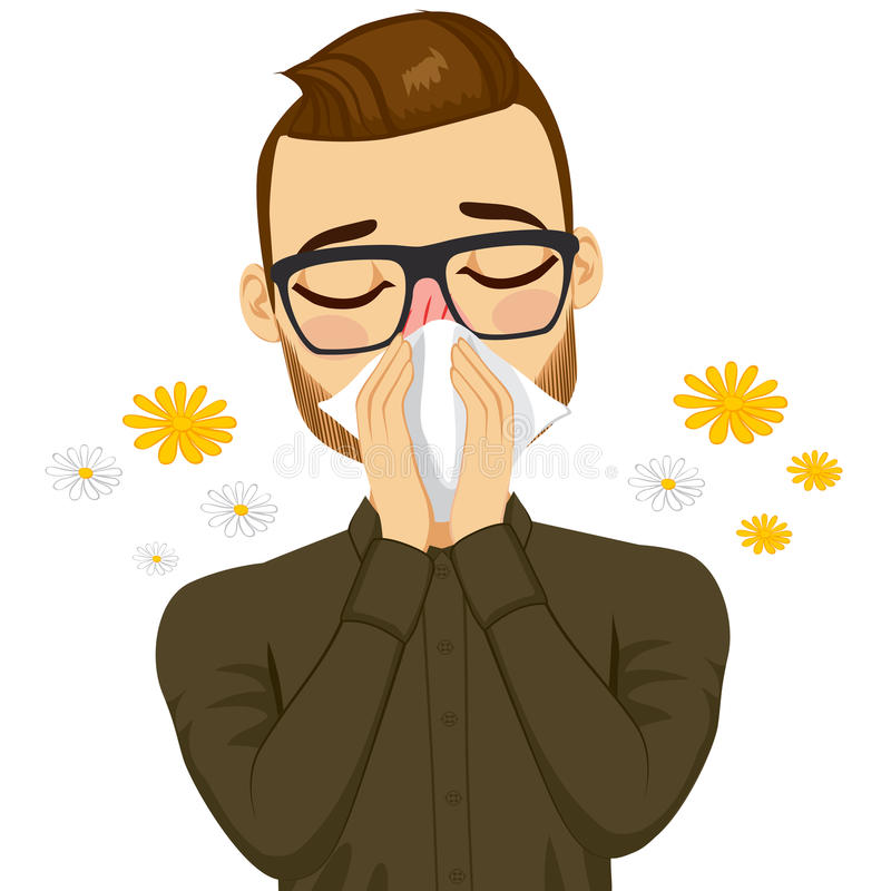 Man Suffering Spring Allergy. Young sick man ill suffering spring allergy using white tissue on nose vector illustration