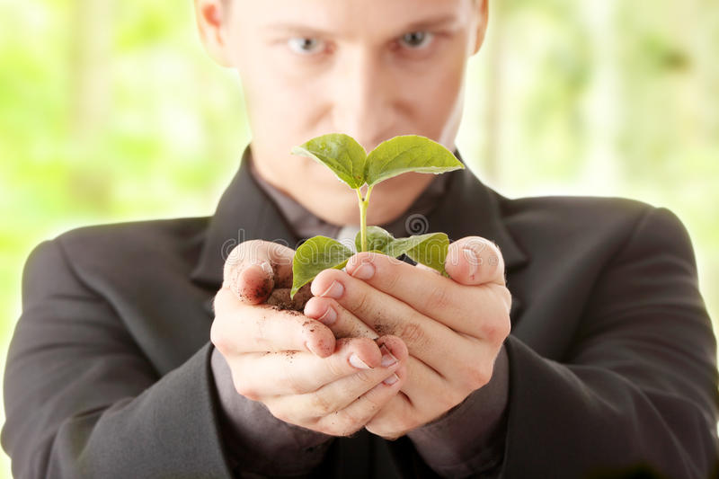 Man in suit holding smal plant in his hands stock image