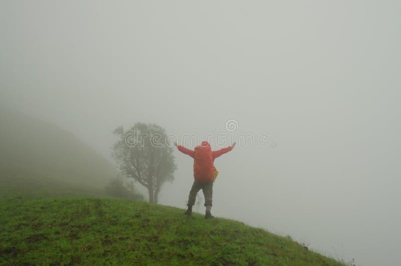 Man in summer field. Man standing in summer field royalty free stock image