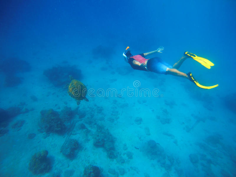Man swimming with sea turtle. Snorkel in yellow fins swims underwater. stock images