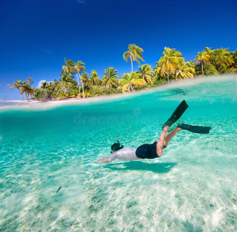 Man swimming underwater royalty free stock image