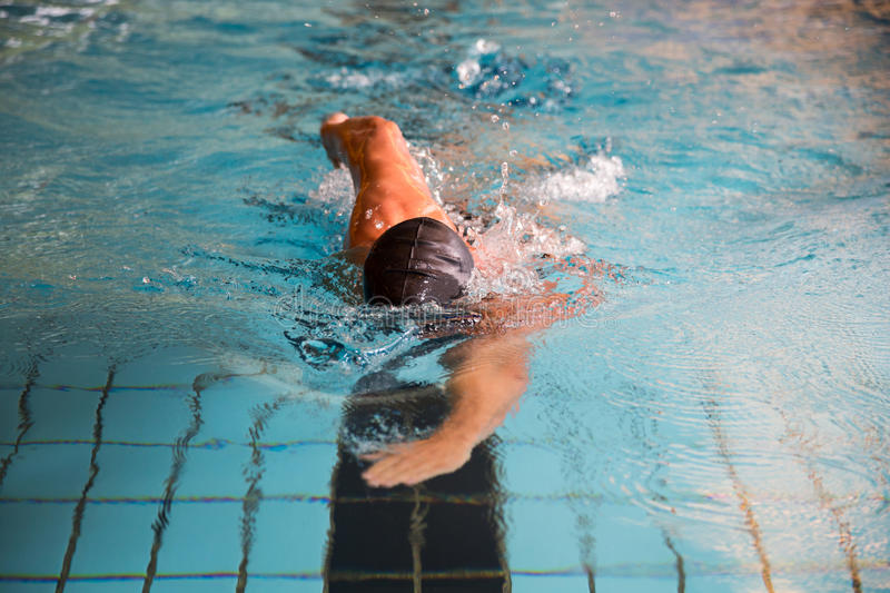 Download Man Swims Front Crawl Style In Swimming Pool Stock Photo - Image: 33431342