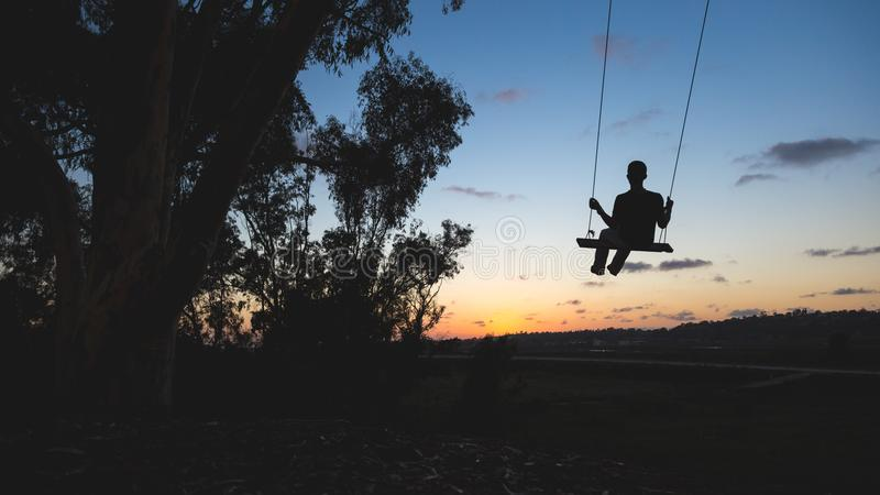 Man On Swing At Sunset Free Public Domain Cc0 Image